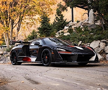 """McLaren Senna """"Master of Monaco"""""""
